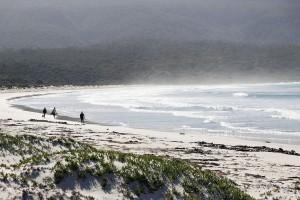 Пляжи Австралии. Почти путеводитель.