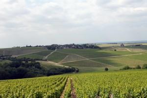 Традиционный пейзаж Бургундии