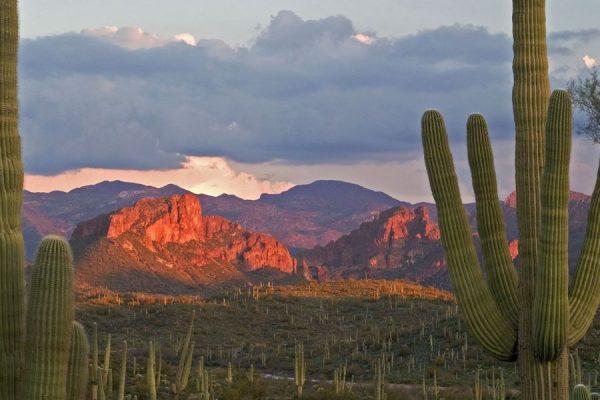 Феникс, штат Аризона