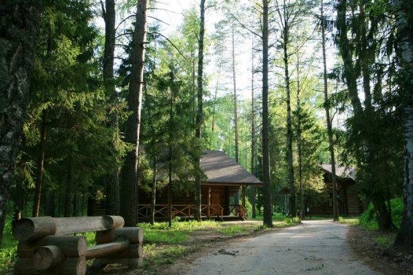 Экоотель Романов лес