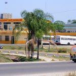 Бельмопан – столица, рожденная ураганом